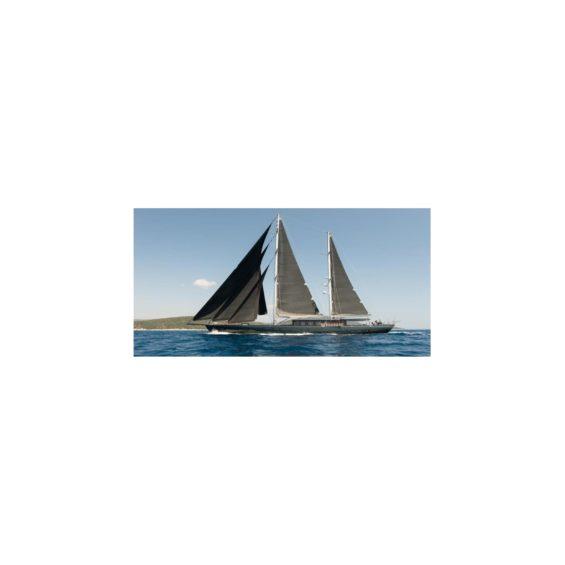 Sailing yacht rox star